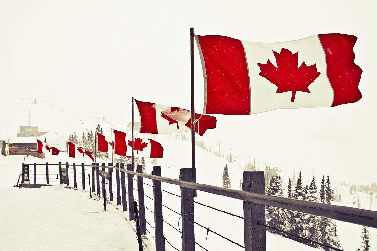怎样办理自费赴加拿大留学经济担保?