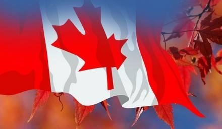申请加拿大学校时,如何避免掉坑